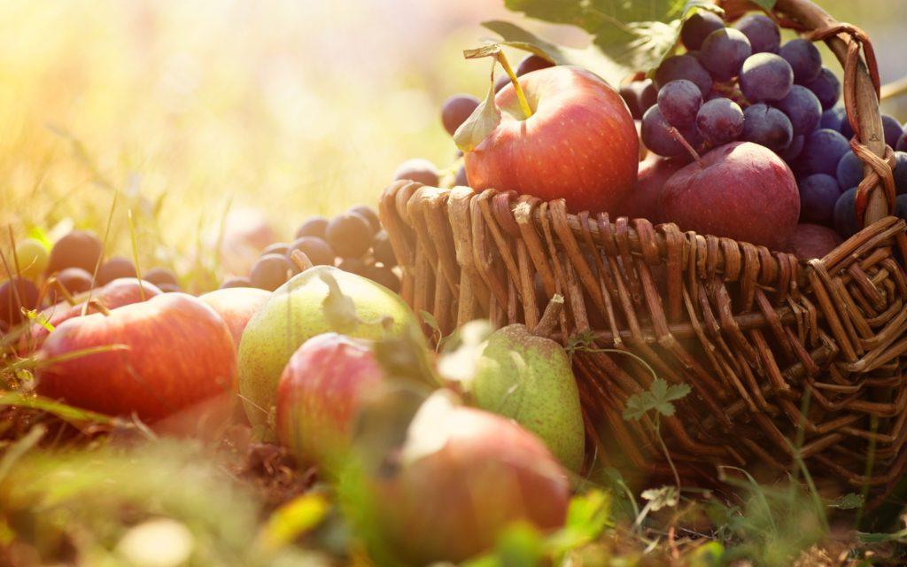 dementia-harvest-3